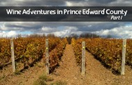 Wine Adventures in Prince Edward County: Part 1