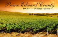 Wine Adventures in Prince Edward County Part II: Pinot Envy