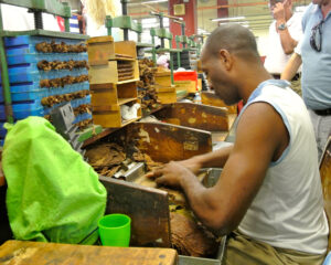 At the cigar factory
