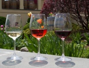 Enjoy some wine while in the Finger Lakes region