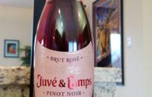 $22.95 - Juve & Camps Rose Pinot Noir
