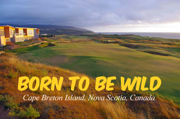 Born to be Wild – Cape Breton Island Nova Scotia Canada